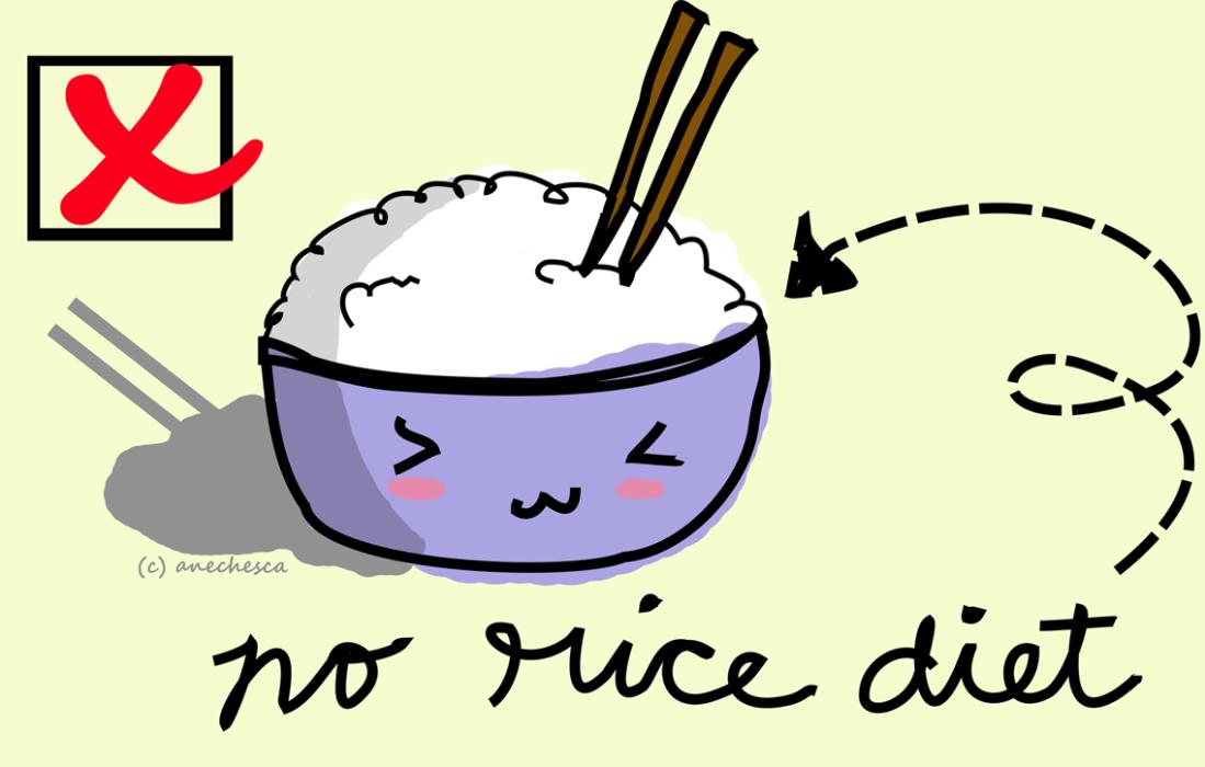 no-rice-diet